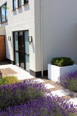 Design voortuin in Roosendaal