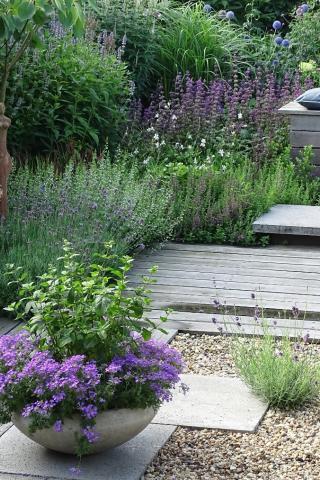 Tuin met oog voor de natuur in Roosendaal