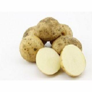 Bionica pootaardappelen (5 kg, Middenvroege vrij vastkokende aardappel, met zeer hoge resistentie)