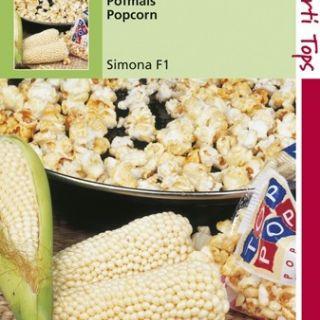 Mais Pofmais Peppy f1 (popcorn mais zaad)