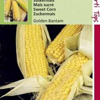 Suikermaïs Golden Bantam (zaad)