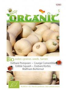 Eetbare pompoen Waltham Butternut (biologisch geteelde pompoenzaden)