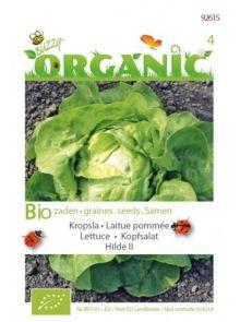 Kropsla Hilde (biologisch geteelde sla zaden)