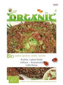 Krulsla Lollo Rossa (biologisch geteelde sla zaden)