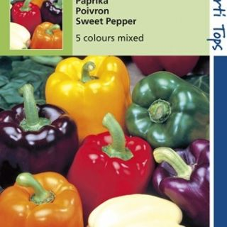 Paprika 5 Kleurenmengsel (zaad van Paprika Orange Horizon, Yellow Sunbright, Purple Bell, white Bell, Yolo Wonder)