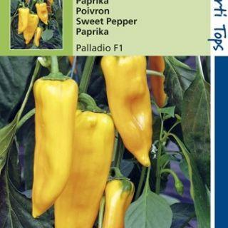 Paprika Palladino (F1 zaad, gele paprika)
