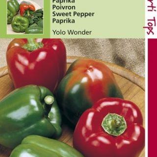 Paprika Yolo Wonder (zaad)