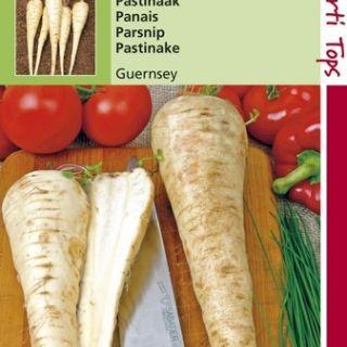 Pastinaak Demi-Long De Guernsey (Pastinaak of Pinksternakel zaad)