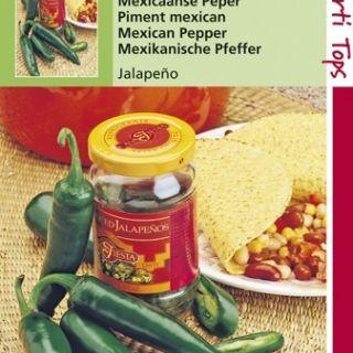 Peper Jalapeno (groene peper zaden)