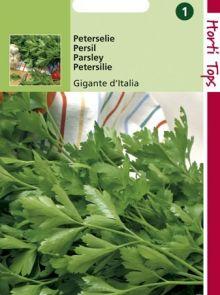 Peterselie Géant d'Italie (zaad)