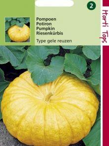 Pompoen Gele Centenaars (Pompoenen zaad)