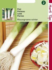 Prei Blauwgroene Winter (Preien zaad)