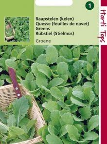 Raapstelen Groene (Kelen, raapsteel zaad)