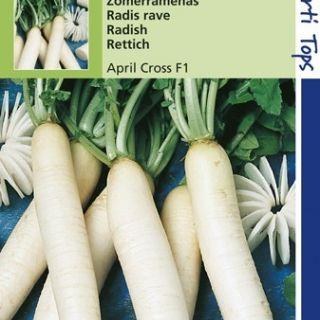 Ramenas April Cross (f1 hybride zaad, Zomerramenas)
