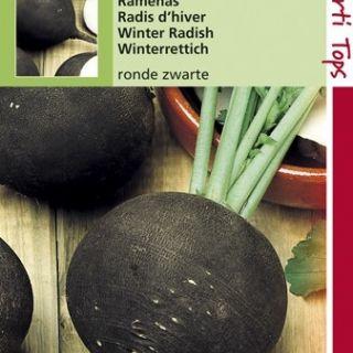 Ramenas Ronde Zwarte (zaad, winterradijs, winterramenas)