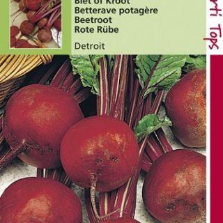 Rode Biet Detroit (zaad bietenkroot)
