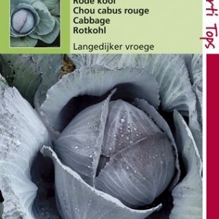 Rode kool Langedijker vroege (zaad)