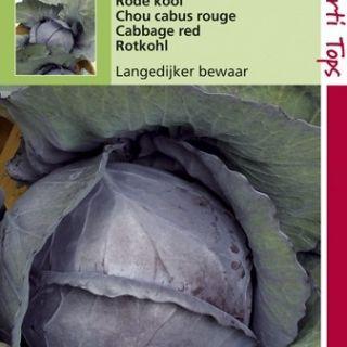 Rode Kool Langedijker winter (zaad)