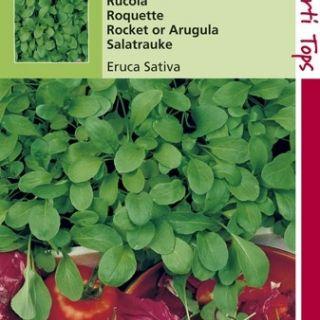 Rucola Italiaanse Snijgroente (Eruca sativa, zaad)