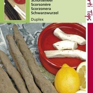 Schorseneren Duplex (Scorzonera hispanica, Schorseneer zaad)