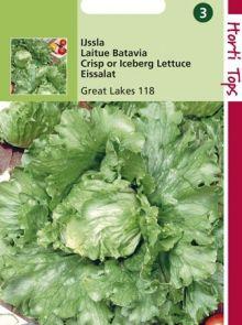 IJsbergsla Great Lakes 18 (sla zaad)
