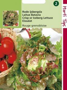 IJsbergsla Rode Grenobloise (sla zaad)