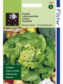 Kropsla Zomerdiamant (Neckarriesen, zomersla, botersla, pillenzaad)
