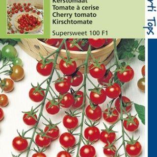 Kerstomaten Super Sweet 100 (F1 hybride zaad tomaat)