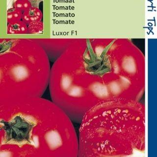Tomaat Luxor f1 hybride (zaad tomaten)