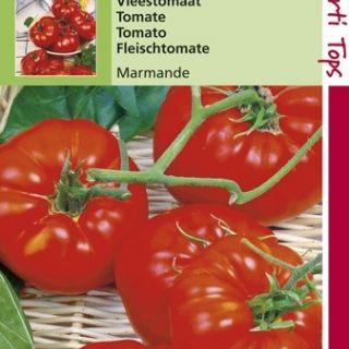 Vleestomaat Marmande (tomaten zaad)
