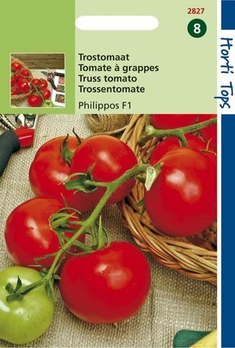 Trostomaten Philippos F1 Hybride (zaden tomaat)