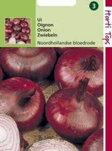 Uien Noordhollandse Bloedrode (rode zaaiui, zaad)