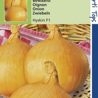 Uien Bolronde gele Hyskin f1 (zaaiui, zaad)