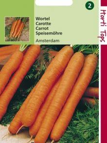 Wortelen Amsterdamse bak (zaad, vroege zomerwortel)