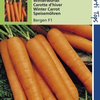 Wortelen Bergen f1 hybride (zaad, Winterwortel)