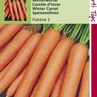 Wortelen Flakkee 2 (zaad, Flakkeese winterwortel)