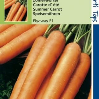 Wortelen Flyaway f1 hybride (zaad zomerwortel)