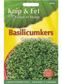 Knip & Eet Basilicum kers (zaad kiemspruiten Basilicumkers)