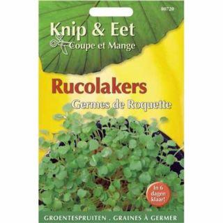 Knip & Eet Rucola kers (zaad kiemspruiten rucolakers)