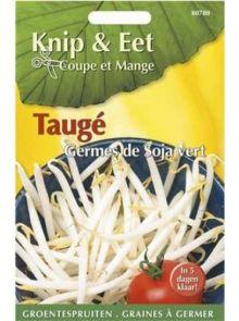 Knip & Eet Taugé (zaad groentespruiten Taugé, Mung Beans)