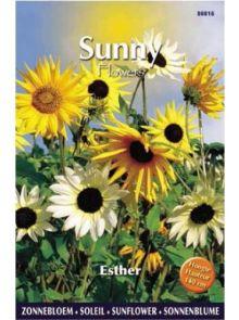 Sunny Sunflowers Esther (zonnebloemzaden met gemengde tinten)