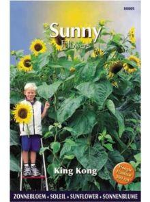 Sunny Sunflowers King Kong (zonnebloemzaden, 300 cm hoge gele reuzenzonnebloem, snijbloem)