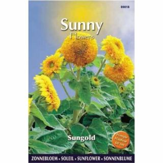 Sunny Sunflowers Sungold (zonnebloemzaden, lage geelbloeiende zonnebloem)