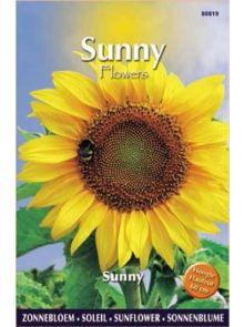 Sunny Sunflowers Sunny (zonnebloemzaden, laag blijvende gele zonnebloem)