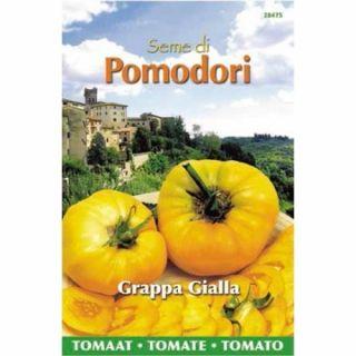 Pomodori vleestomaat Grappa Gialla, Brandywine Yellow (zaad gele tomaat)