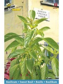 Basilicum a piccole Foglie (zaad, kleinbladige basilicum)
