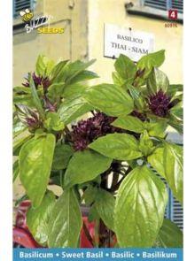 Basilicum Thai-Siam (Thaise basilicum, zaad)