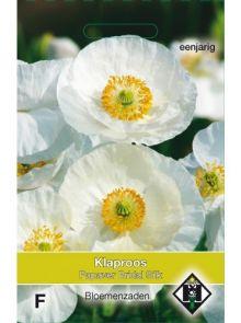 Papaver rhoeas Bridal Silk (zaad Poppies, bruidszijde witte klaproosjes)