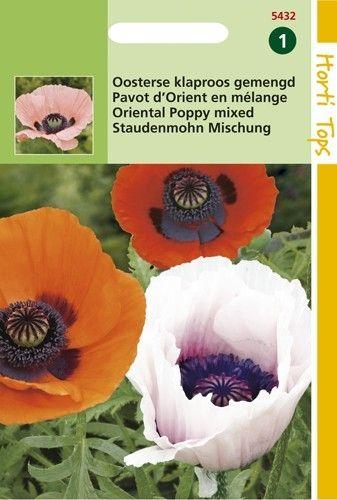 Papaver Oriëntale (zaad Poppies, Oosterse papaver)