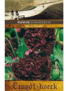 Papaver somniferum Black Paeony (zaad donkere klaproos, slaapbol)